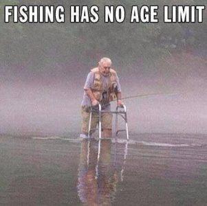 Fisk fra rolator
